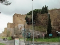 Rim 1 305